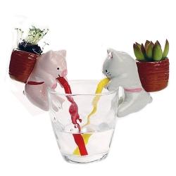 動物吸水透明杯子小盆栽
