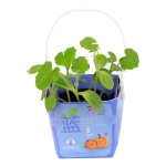 Sealing Portable Basket Potted