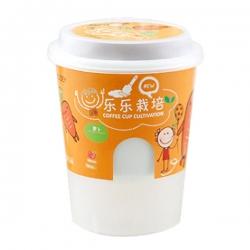 咖啡杯盆栽