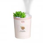 植物迷妳加濕器