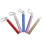 Stainless steel retractable straw